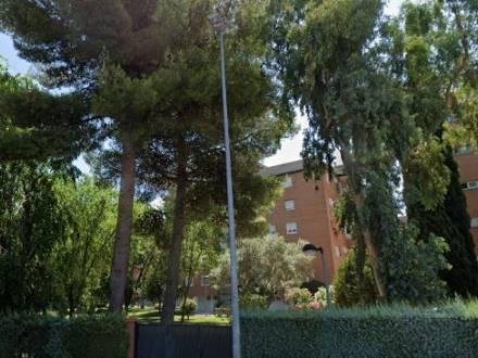 Avda. de los pinos