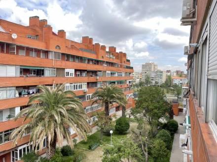 C/ Benjamín Palencia